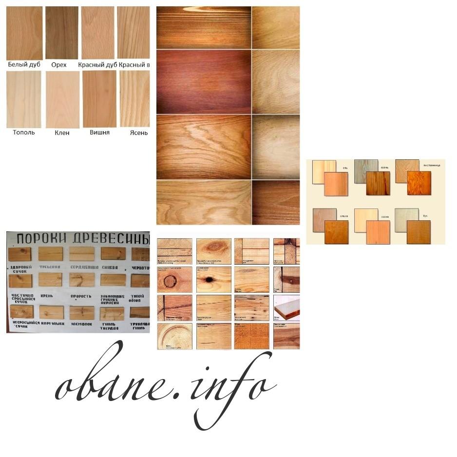 Разновидности и пороки древесины