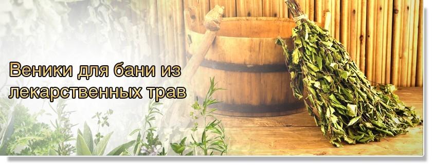 Лекарственные травы для веника