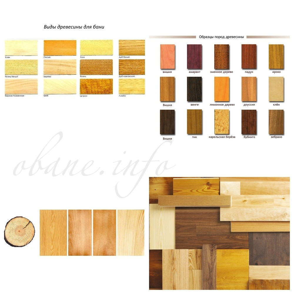 Внешний вид древесины