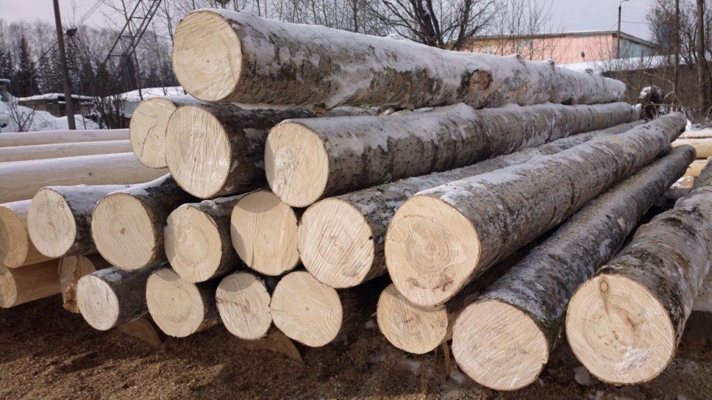 Использование древесины в строительстве бани