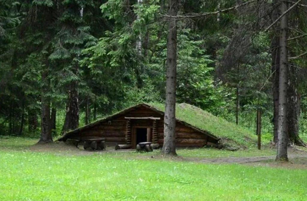 В лесу небольшая банька